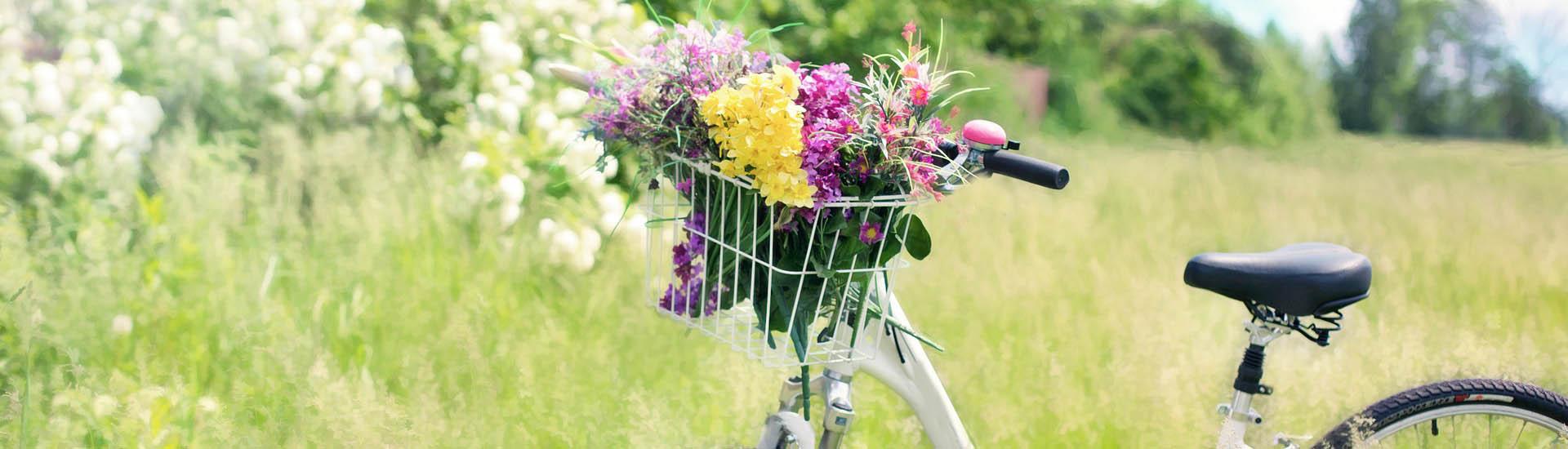 Ciclolab negozio di bici a Roma - slider homepage_3