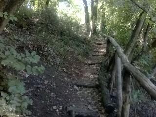 Escursione_CicloLAB_Insugherata_Panorama_1