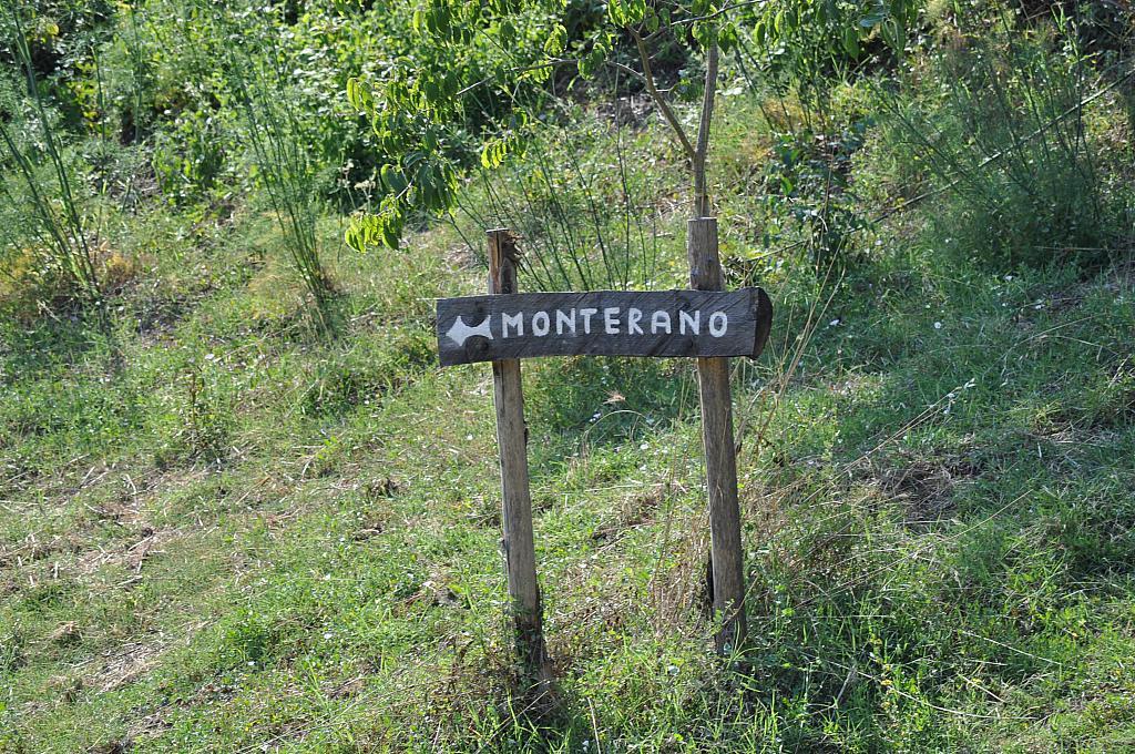Escursione_Canale_Monterano_foto_web_5_